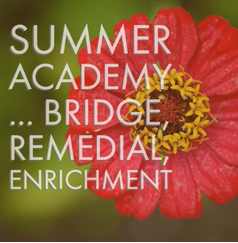 Summer Academy 2020 is Going Remote!