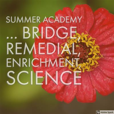 Welcome to Summer Academy 2018!