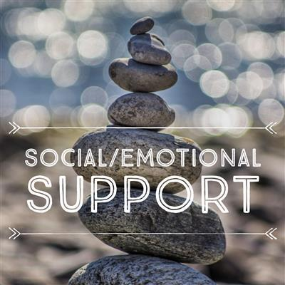 social/emotional support
