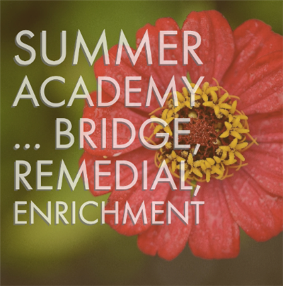 overview of remedial and enrichment