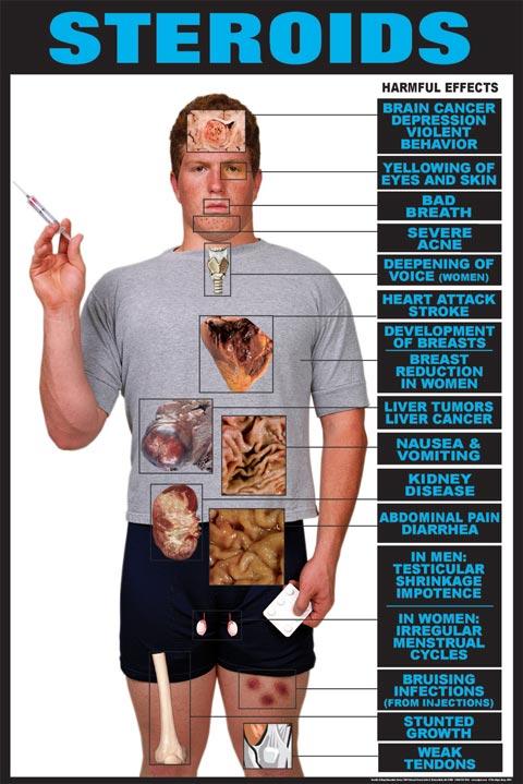 Ретаболил увеличивает член